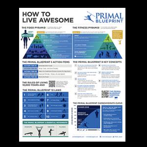 Primal Blueprint Poster