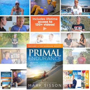 Primal Endurance Mastery Course