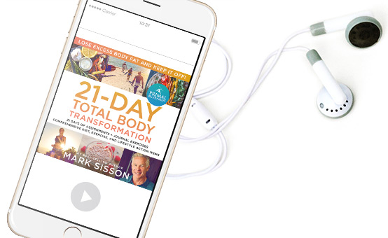 21Day Audiobook